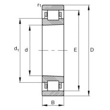 200 mm x 310 mm x 51 mm  FAG N1040-K-M1-SP cylindrical roller bearings