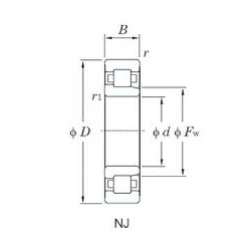 75 mm x 130 mm x 25 mm  KOYO NJ215 cylindrical roller bearings