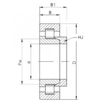 55 mm x 140 mm x 33 mm  ISO NH411 cylindrical roller bearings