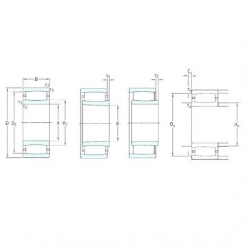 120 mm x 180 mm x 60 mm  SKF C4024K30V cylindrical roller bearings