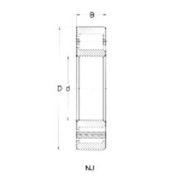 75 mm x 130 mm x 25 mm  Loyal NJ215 cylindrical roller bearings